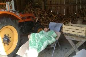 Wer früh morgens anreist schläft auch mal gerne in der Holzhütte. - © www.urlaub-greifenburg.at