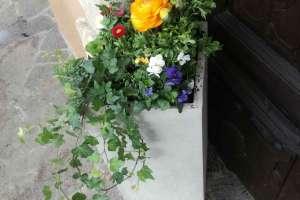 Endlich kommt langsam der Frühling. - © www.urlaub-greifenburg.at