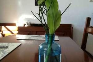 Auch im Haus ist Frühling. - © www.urlaub-greifenburg.at