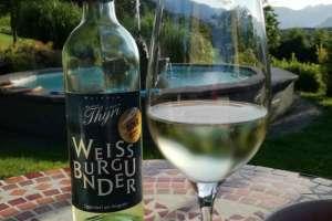 Sommer, Sonne und Wein. Was will man mehr? - © www.urlaub-greifenburg.at