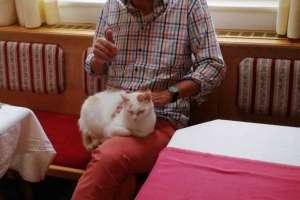 Schoki liebt es bei den Gästen zu sein! - © www.urlaub-greifenburg.at