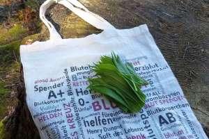 Der erste Bärlauch! - © www.urlaub-greifenburg.at