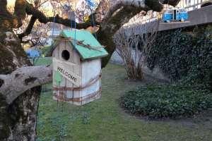 Vielleicht eine Unterkunft für einen Singvogel? - © www.urlaub-greifenburg.at
