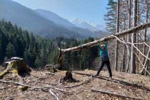 Ich könnte schon wieder Bäume ausreißen! - © www.urlaub-greifenburg.at
