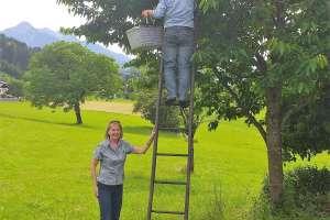 Erika hält die Leiter damit nichts passiert. - © www.urlaub-greifenburg.at